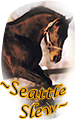 ~seattle slew~