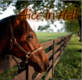 *alice in hell*